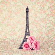 Imagem de  Quadro Decorativo em Canvas 25x25 cm Paris - Jolie