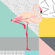 Imagem de Quadro Decorativo em Canvas 25x25 cm Flamingo - Jolie