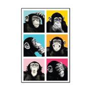 Imagem de Placa Decorativa em MDF 29x19 cm Macacos 5297 - Cia Laser