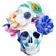 Imagem de  Quadro Decorativo em Canvas 25x25 cm Caveira - Jolie