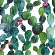 Imagem de  Quadro Decorativo em Canvas 25x25 cm Cactos Verde - Jolie