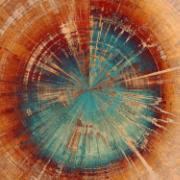 Imagem de  Quadro Decorativo em Canvas 50x70 cm Tronco Abstrato - Jolie