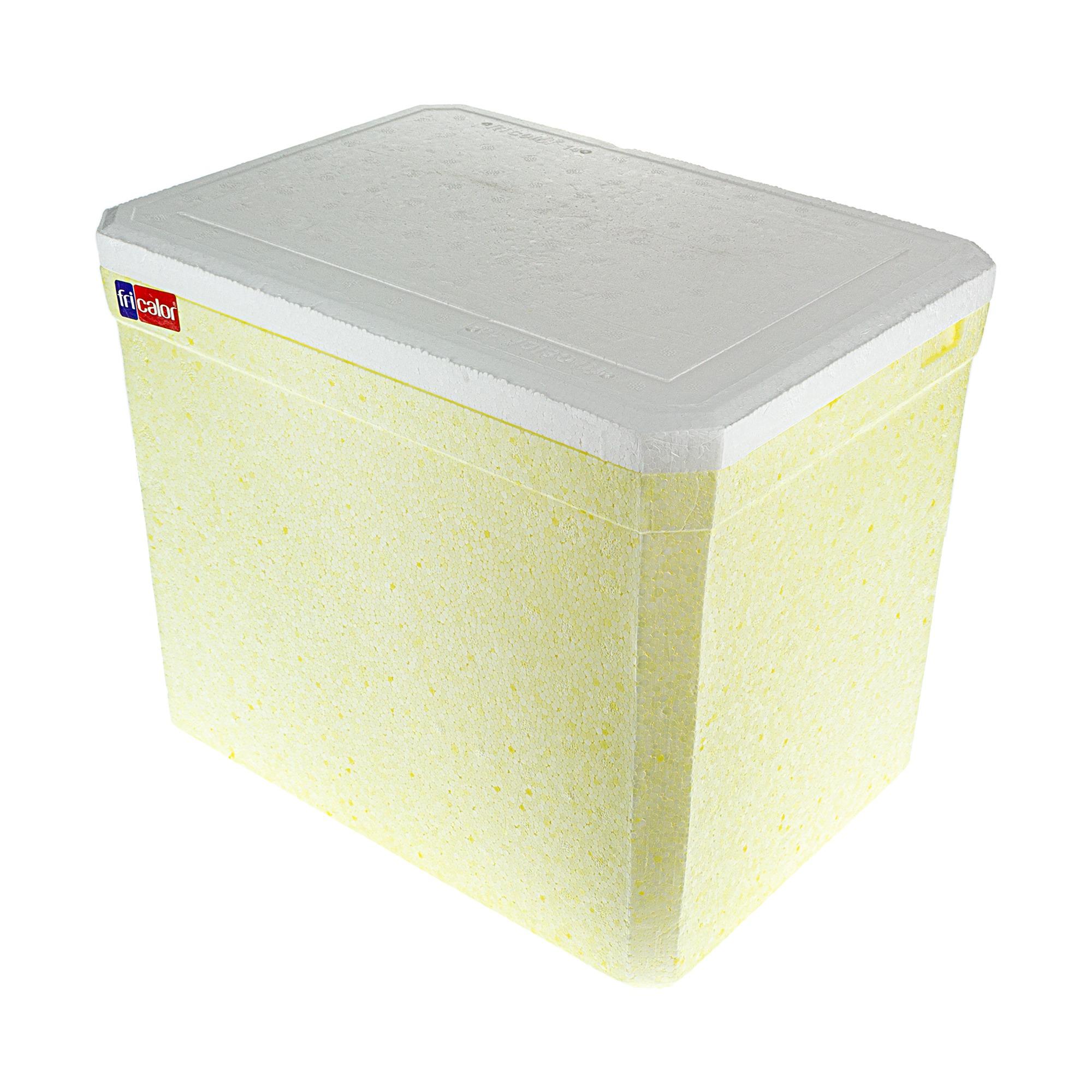 Caixa Termica Isopor 14L com Alca FR02016 - Fri Calor