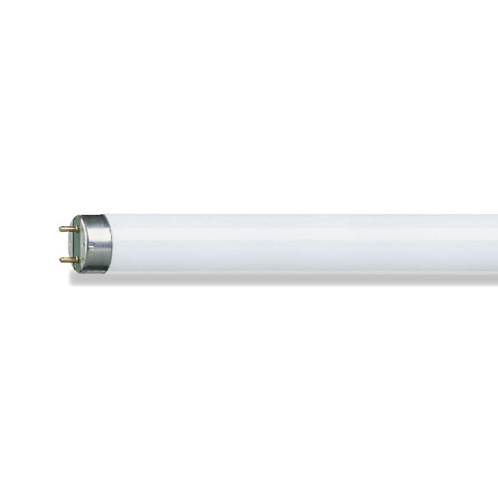 Lampada Fluorescente T10 65w Luz Dia - Philips