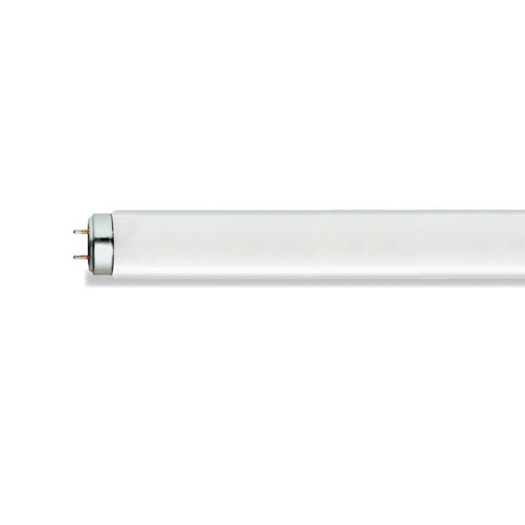Lampada Fluorescente 16W T8 F16 SUP84 TLD - Philips