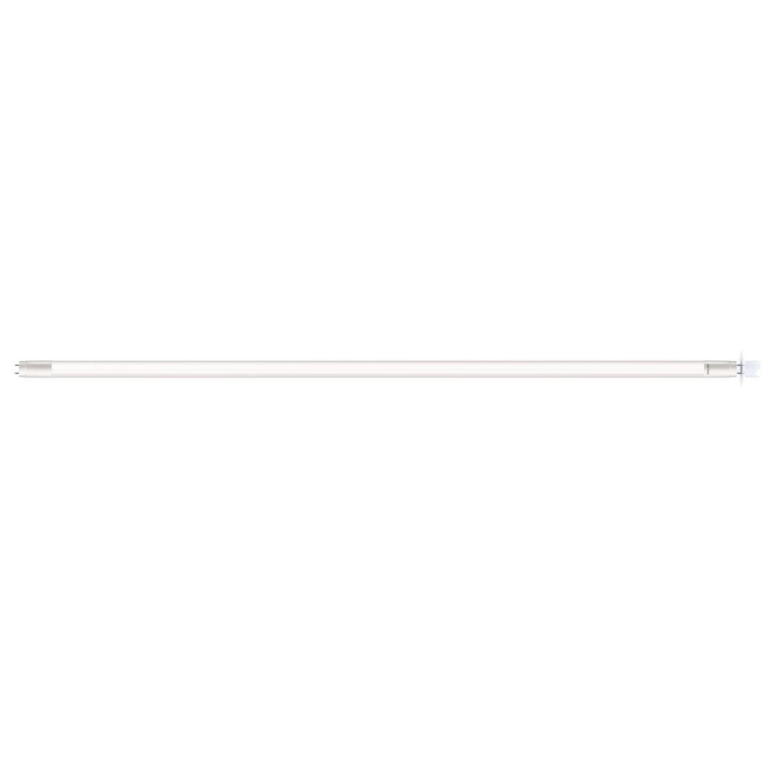 Lampada LED Tubular T08 18W Amarela Bivolt - Philips