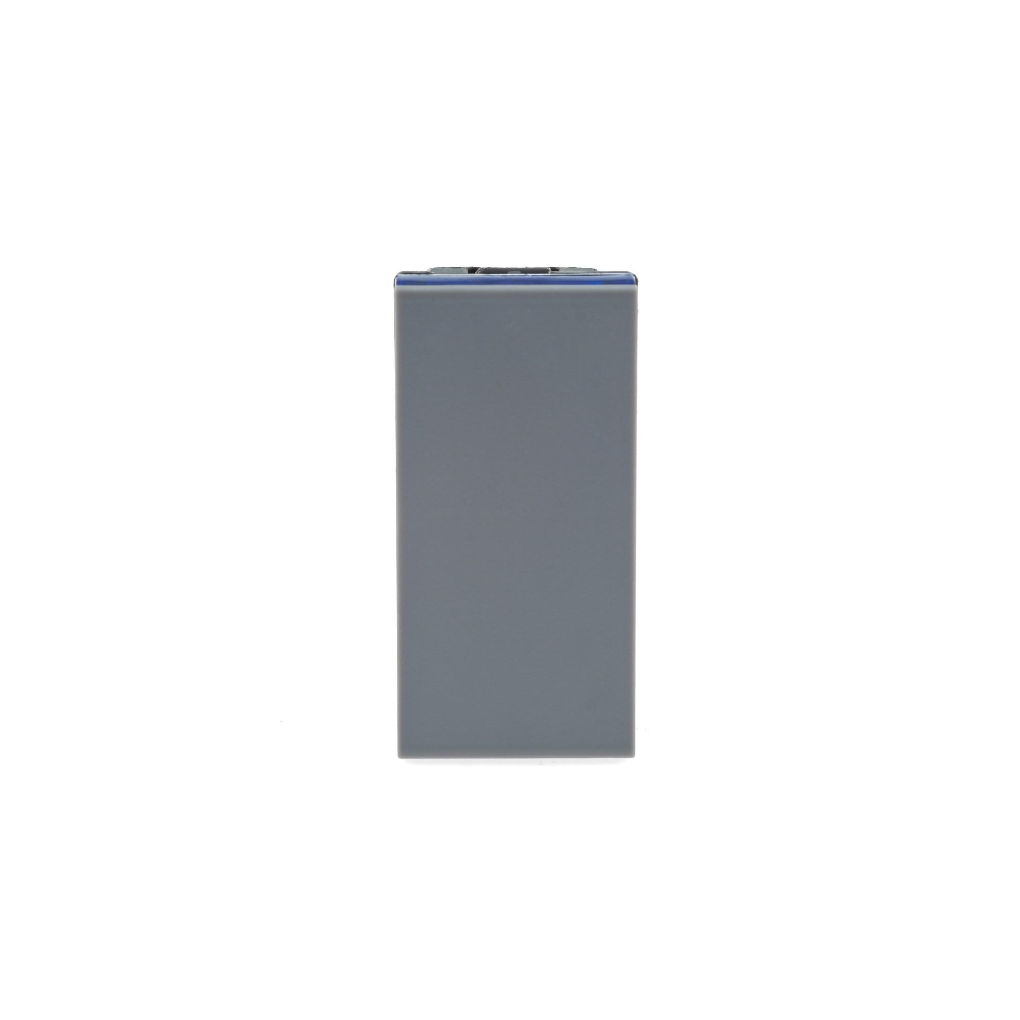Modulo Interruptor Simples 1 Modulo Borne Automatico 10A - Cinza - Plus - Legrand