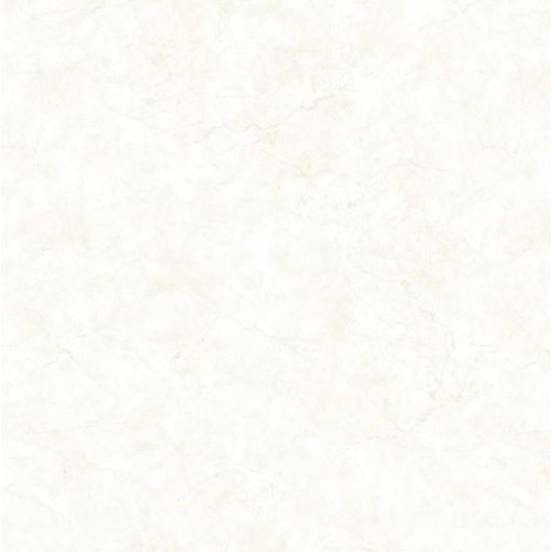 Porcelanato Tipo A HD Retificado 60x60cm 215 m Acetinado Branco - Biancogres