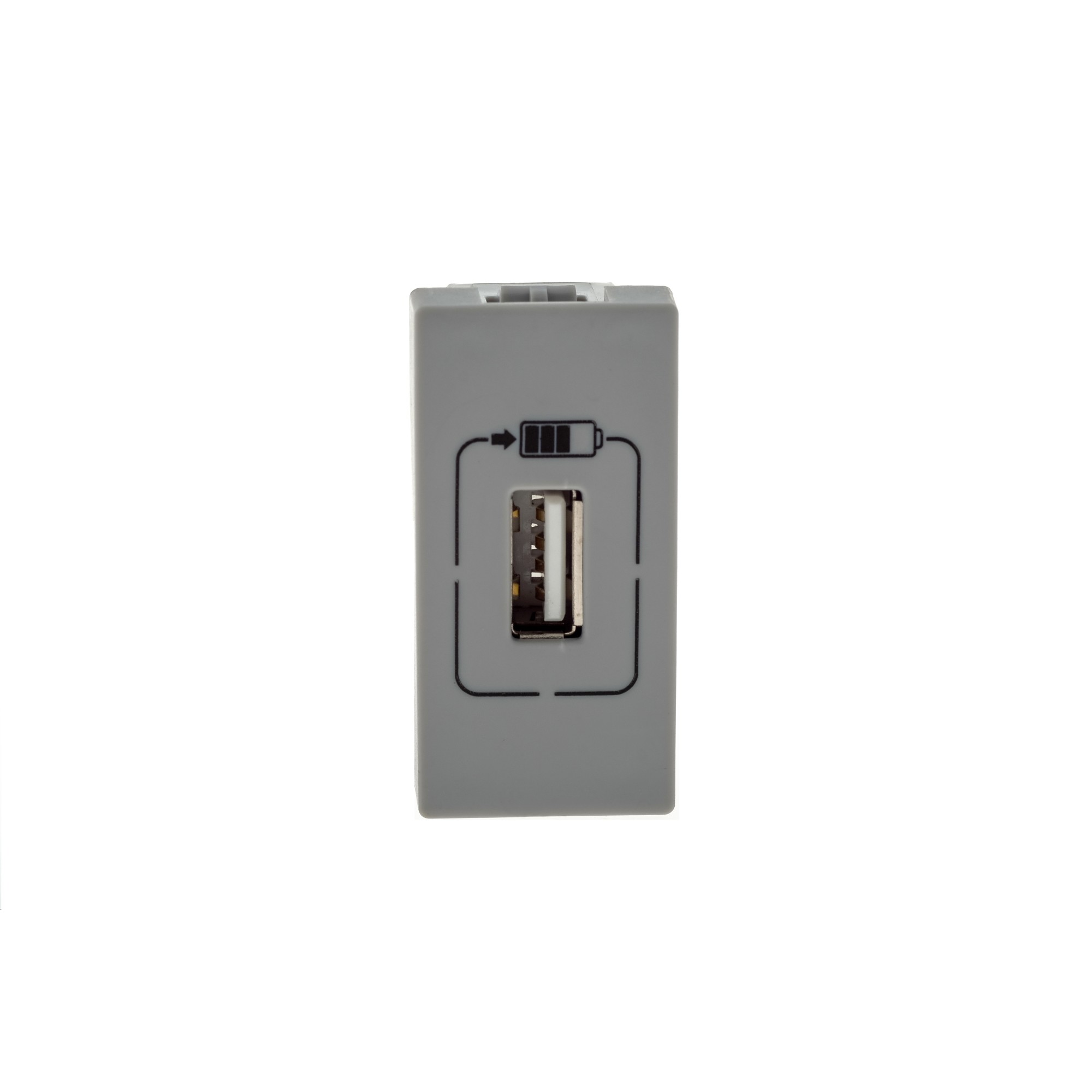 Modulo de Tomada para Carregador USB Cinza 615088 Bivolt - Legrand