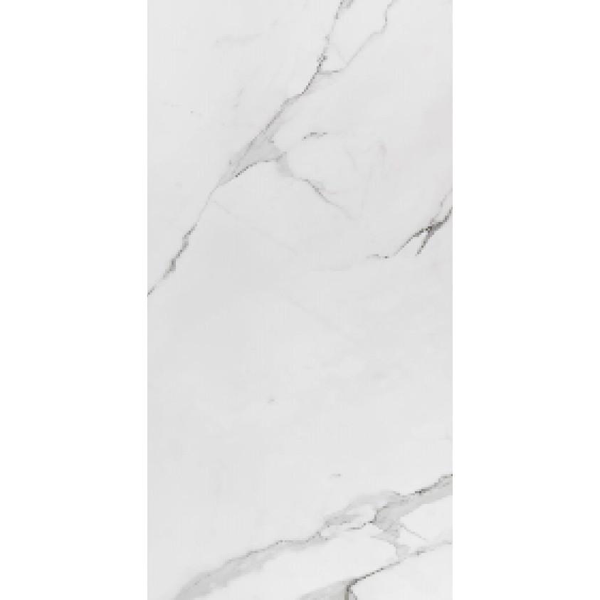 Porcelanato Tipo A 59x1182 Esmaltado Polido Branco 139 m Place - Eliane