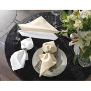 Guardanapo de Tecido Gourmet 50x50 cm Bege - Karsten