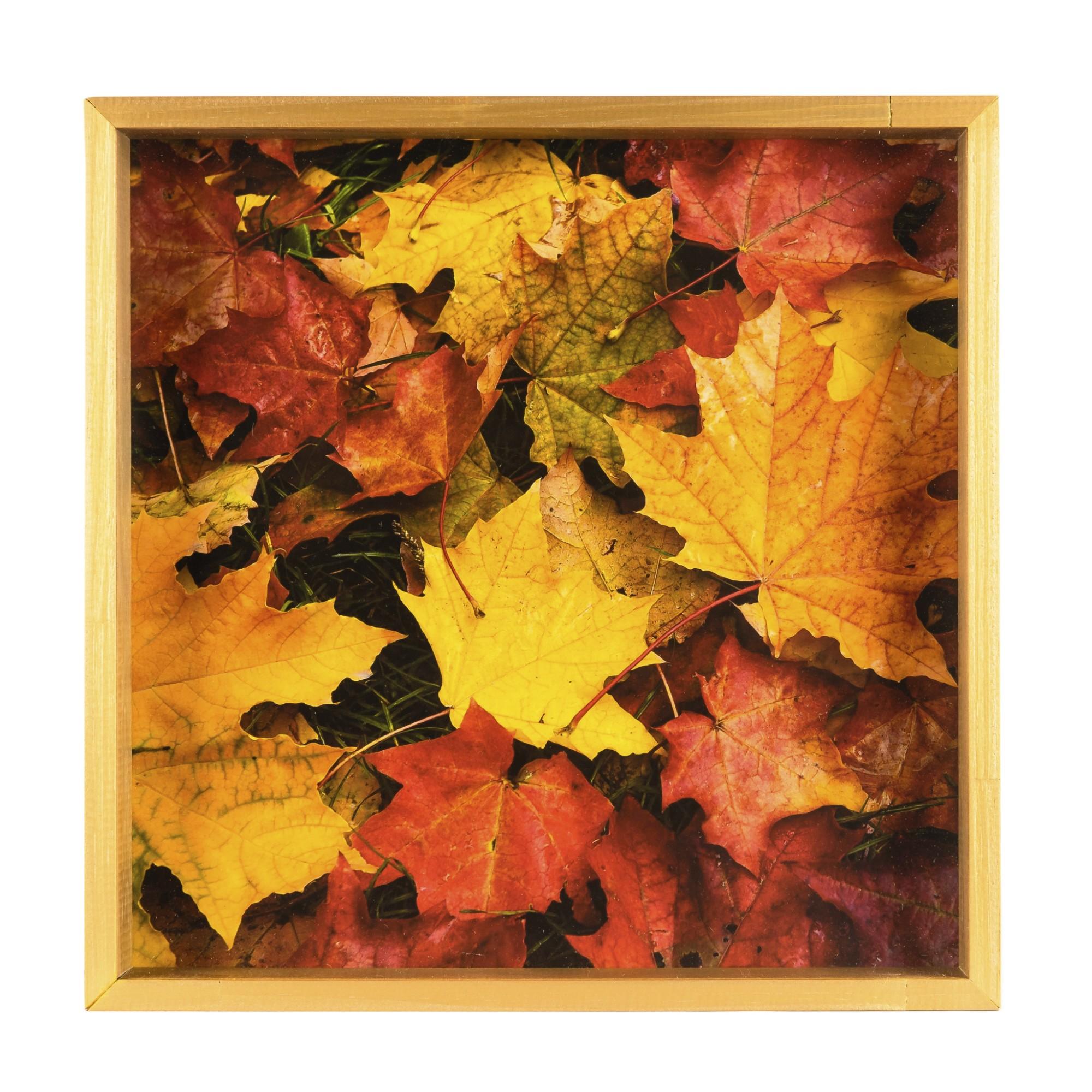 Quadro Decorativo 35x35 cm Folhagem 1036 - Art Frame