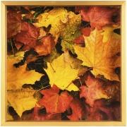 Quadro Decorativo 35x35 cm Folhagem 103/6 - Art Frame