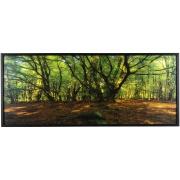 Quadro Decorativo 40x100 cm Paisagem 104/3 - Art Frame