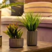 Vaso para Plantas Plástico 6x9,96 cm Redondo Chumbo - Ou