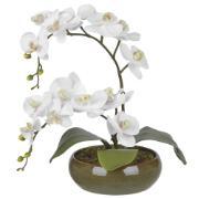 Arranjo Decorativo 47cm Orquídea Verde 60553 - Dea