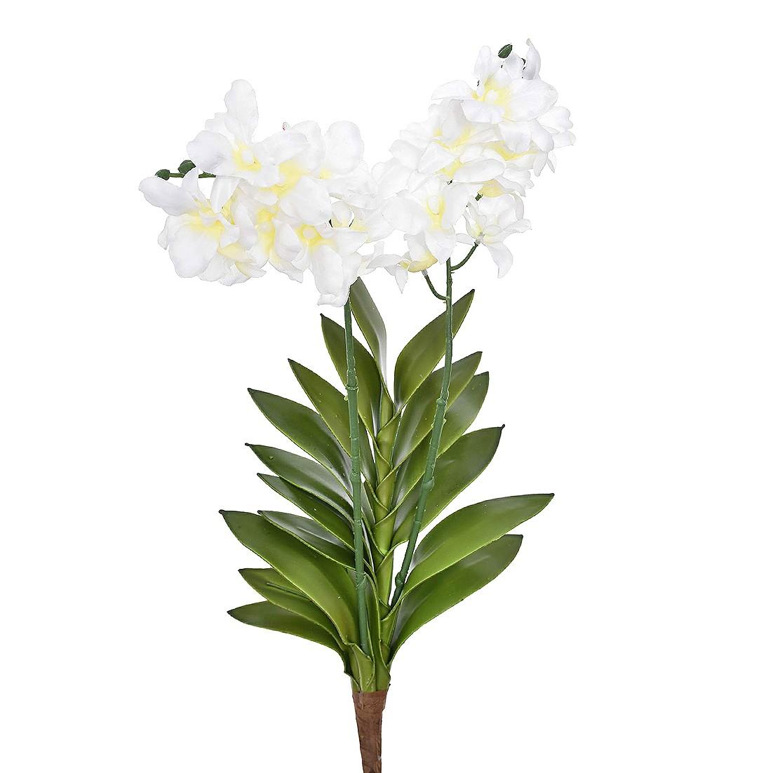 Haste Artificial Orquidea Cymbidium 55cm Branco