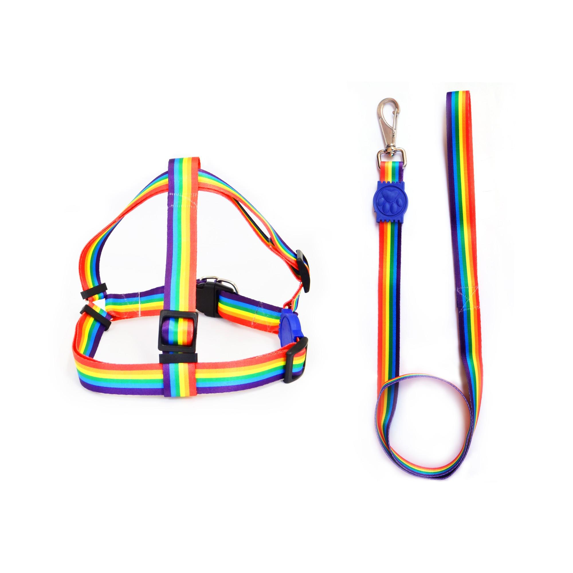 Coleira Peitoral Conjunto Guia e Peitoral Arco-Iris P - Malu Pet