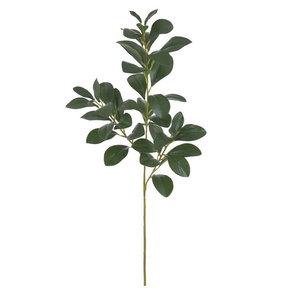 Haste de Folha Artificial 70cm Folha Clusia Verde - Dea