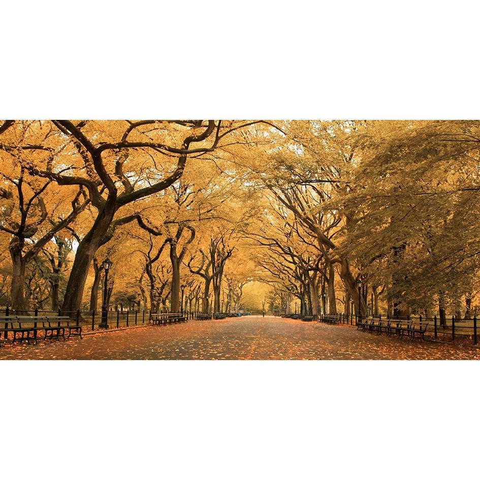 Quadro Decorativo em Canvas 50x100 cm Arvores - Jolie