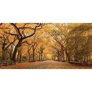 Quadro Decorativo em Canvas 50x100 cm Árvores - Jolie