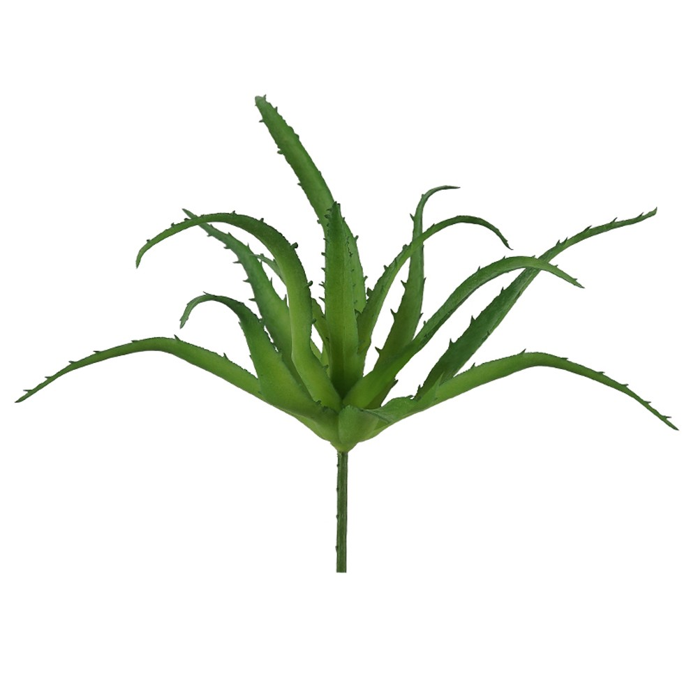 Haste Folhagem Agave Suculenta Verde 15 cm - Dea