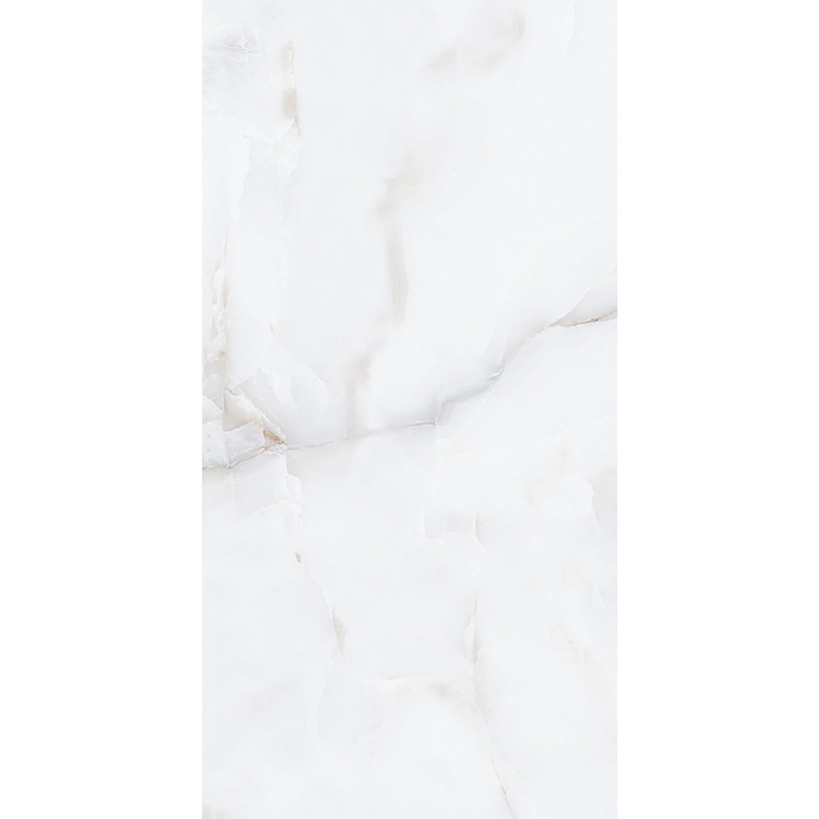 Porcelanato Tipo A 60x120 cm Onix Esmaltado Polido 144m - Platinum
