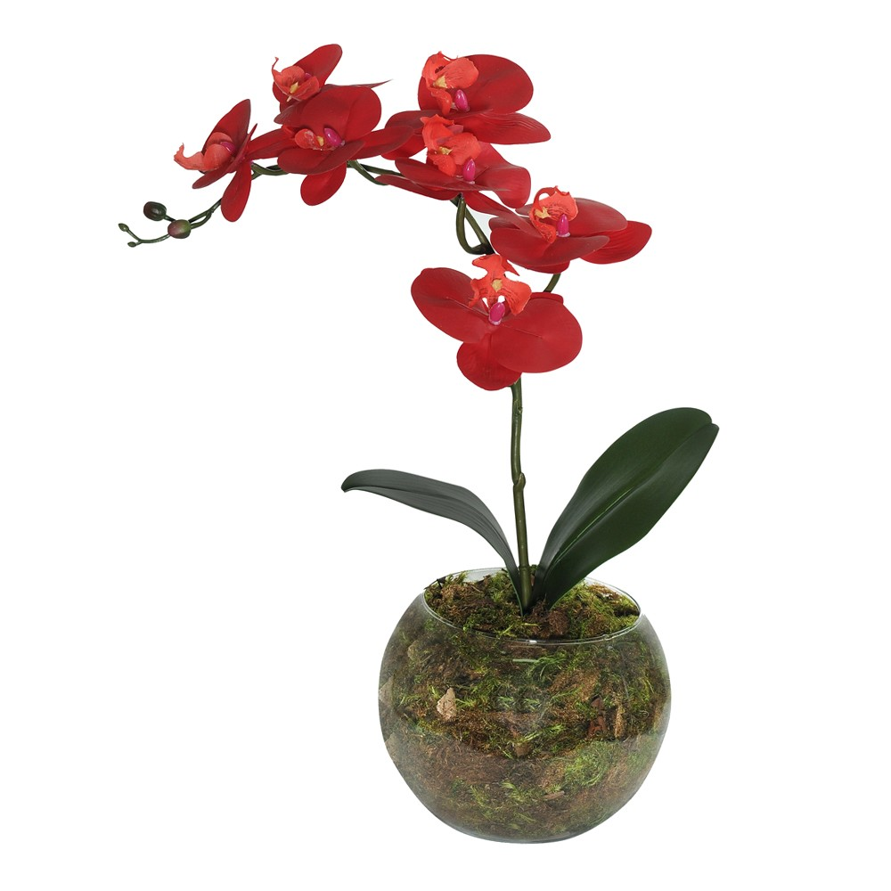 Arranjo Decorativo Orquidea com Vaso de Vidro - Dea