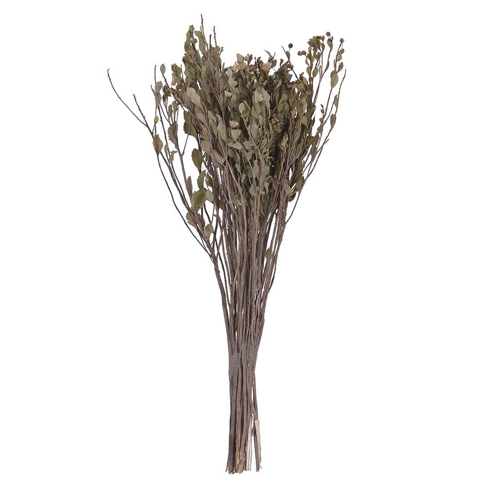 Buque Alecrim Desidratado Natural 50 cm - Dea