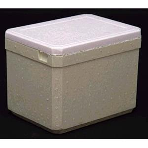 Caixa Termica de Isopor 5L com Alca 20005 - Fri Calor